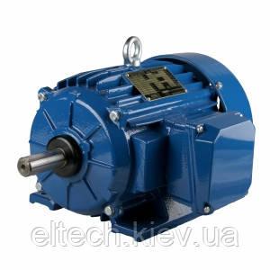 """Серия ESg-STe   Трехфазные двигатели """"NEMA Epact"""" с короткозамкнутым ротором."""
