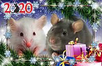Магнит на холодильник. крыски новогодние