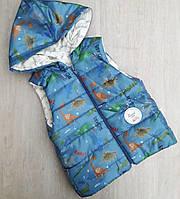 Детская жилетка для мальчика Дракон оптом на 1-2 года