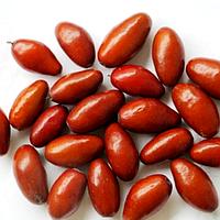 Саженцы (Зизифус Китайский) - 93 (сеянец) - ранний, урожайный (унаби, финика, жужуба)