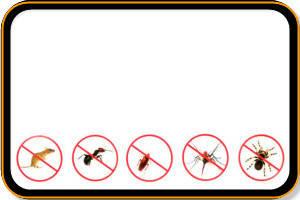 Боротьба з гризунами