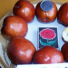 Саженцы Зизифуса Коктебель (сеянец) - поздний, крупноплодный. (унаби, финика, жужуба), фото 3