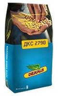 Купить Семена кукурузы ДКС 2790