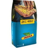 Купить Семена кукурузы  ДКС 4082
