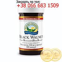 Грецкий орех, черный (Black Walnut)