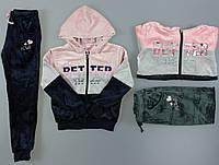 Велюровый костюм-двойка для девочек Setty Koop, 8-16 лет. Артикул: IA88103 {есть:12 лет,8 лет}, фото 1