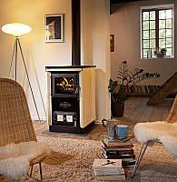 Отопительно варочная печь камин на дровах Moravia 9114