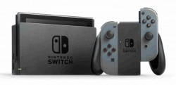 Nintendo SWITCH Grey Joy-Con (2019)
