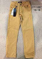 Котоновые брюки для мальчиков F&D 10-18 лет, фото 1
