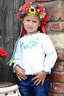 Трикотажная кофточка вышиванка для девочки с голубыми фиалками, фото 1