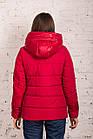 Куртка женская на зиму сезон 2020 - (модель кт-680), фото 4