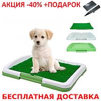 Домашний туалет для собак Puppy Potty Pad + нож- визитка