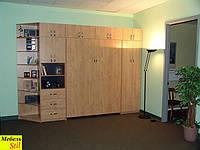 Стенка со шкафом-кроватью, фото 1
