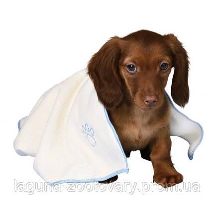 Набор для щенка-мальчика, фото 2