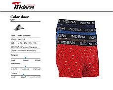Мужские стрейчевые боксеры «INDENA»  АРТ.85160, фото 2