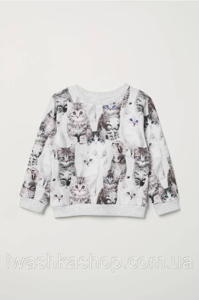 Удобный трикотажный свитшот с котятами на девочек 6 - 8 лет, р. 122 - 128, H&M