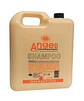 Шампунь для сухих и нормальных волос Angel Professional Marine Depth Spa (4800 ml)