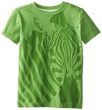Детская футболка для мальчика Desigual Испания 41T3652 Зеленый