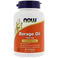"""Масло бурачника NOW Foods """"Borage Oil"""" 1000 мг, наивысшее содержание ГЛА (60 гелевых капсул)"""