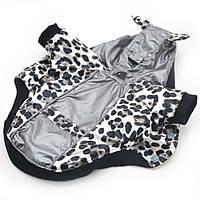 Курточка для собак Лео серый №0 25х40 см, фото 1