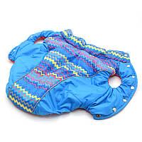 Жилет для собак Орнамент синий №2 35х54 см