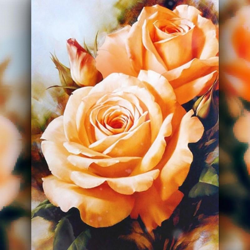 Алмазная вышивка The Wortex Diamonds Оранжевые Розы 30x40 (TWD10012)