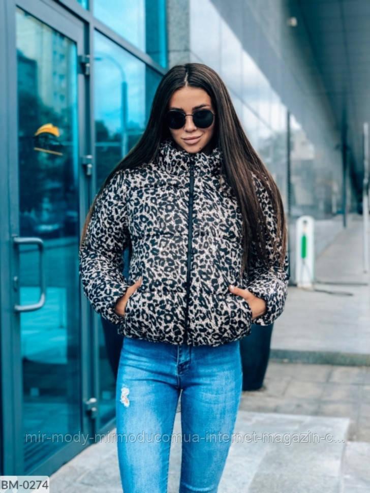 Женская куртка осень-зима BM-0274 р:42-46 059617 принт леопард