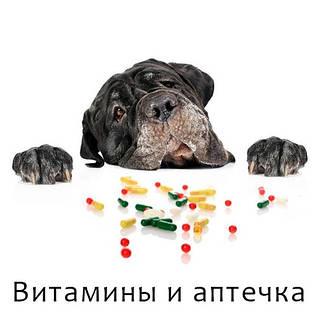 Витамины и аптечка