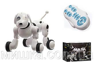 """Детская интерактивная собака """"ROBODOG"""" с пультом управления"""