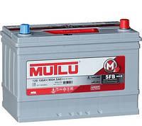 Аккумулятор автомобильный Mutlu Silver Asia 100AH L+ 900A (D31.100.085.D)