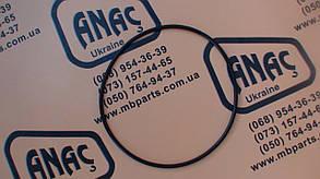 828/10181 Уплотнительное кольцо на JCB 3CX, 4CX, фото 2