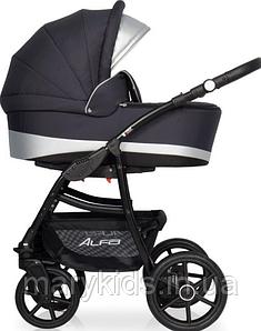 Детская универсальная коляска 2 в 1 Riko Alfa Ecco 01