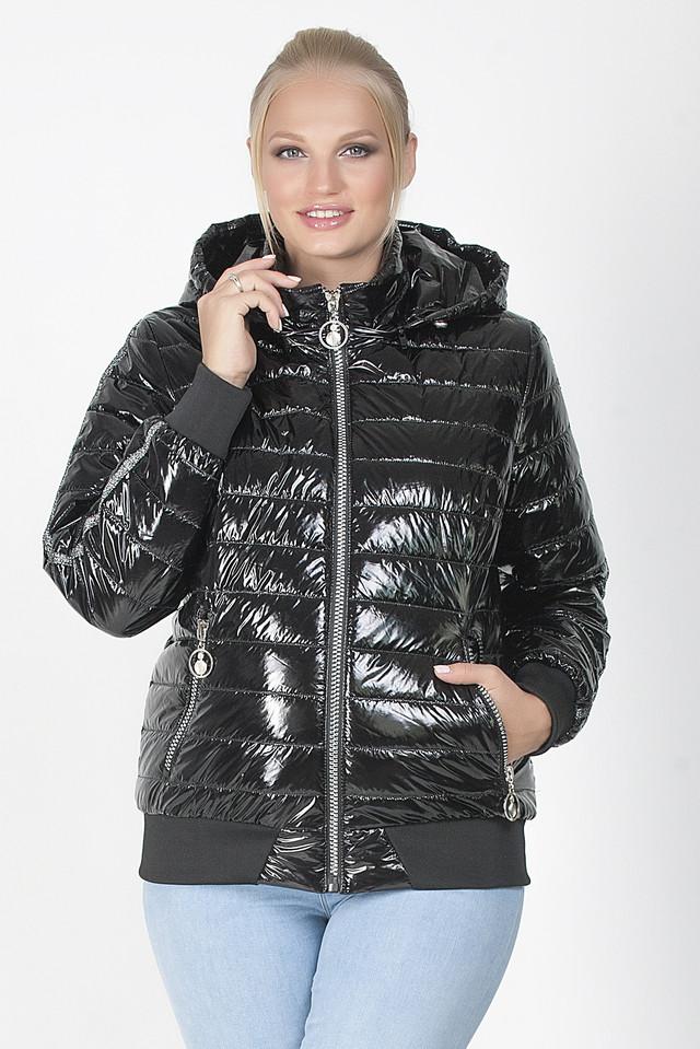 купить куртку монклер в спб
