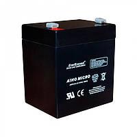 Аккумулятор AGM EverExceed AM 12-4,5