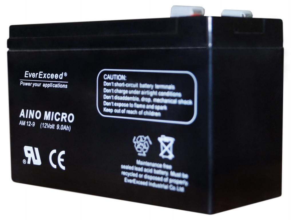Акумулятор AGM EverExceed AM 12-9,5