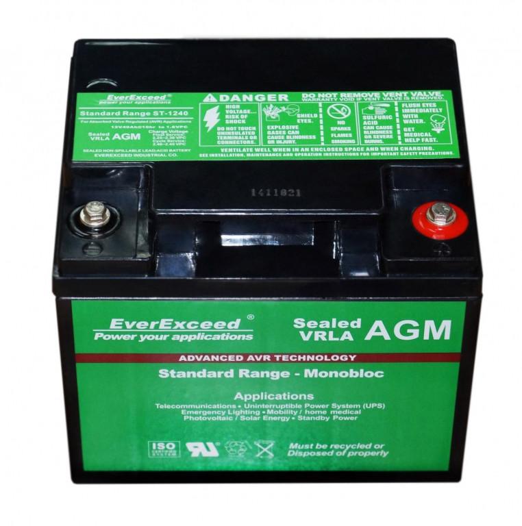 Аккумулятор AGM EverExceed ST-1240