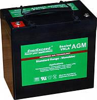 Аккумулятор AGM EverExceed ST-12100