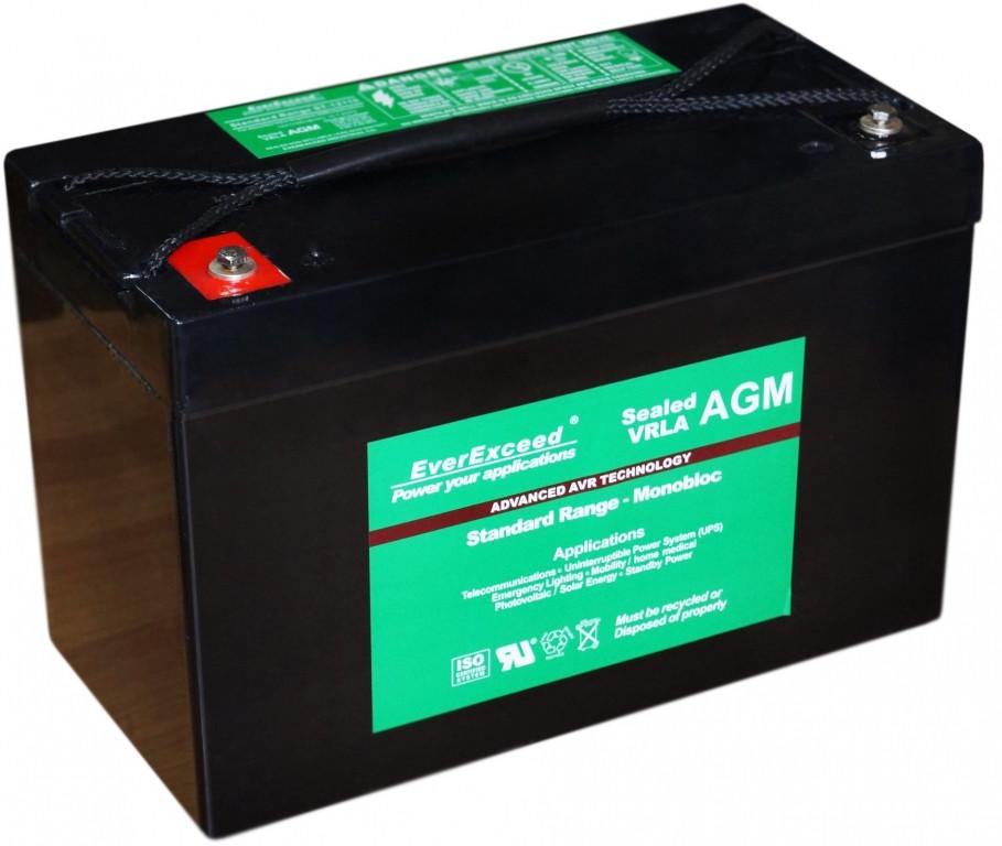Аккумулятор AGM EverExceed ST-12150