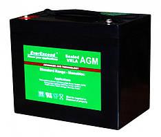 Аккумулятор AGM EverExceed ST-6100