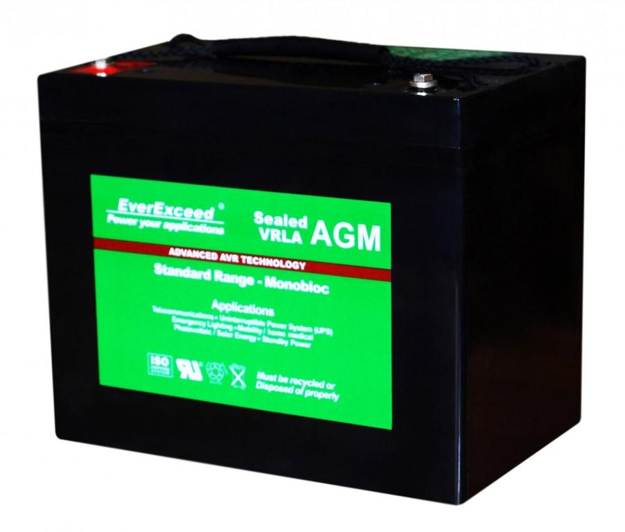 Аккумулятор AGM EverExceed ST-6150