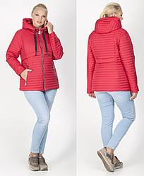 Куртка легка жіноча на силіконі демісезонна плащівка стьобана (батальна), червона