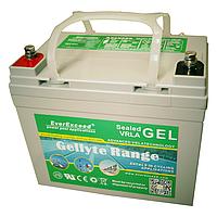 Аккумулятор GEL EverExceed GL-1220