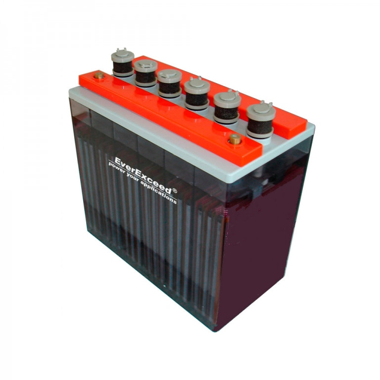 Аккумулятор EverExceed 4 OPzS 200