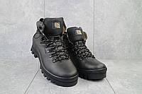 Мужские ботинки кожаные зимние черные Shark B157, фото 1