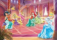 Фотообои детские для девочки Дисней 254х184 см : Принцессы в замке (2489P4)