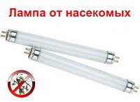 Лампа к уничтожителю F6T5BL Philips