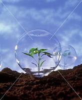 Средства защиты растений сзр