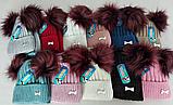 М 5079 Комплект для девочки шапка  з двома помпонами+баф ( 3 - 8 лет), кашемир, флис, фото 2