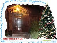 Банкет в новогоднюю ночь