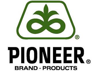 Пионер семена